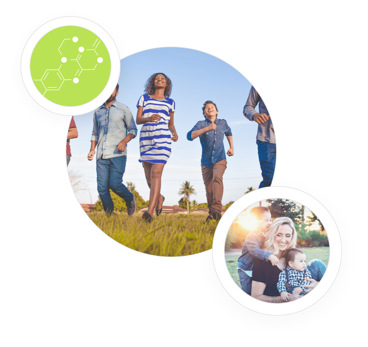23andMe or Ancestry com Conversion | Fitgenes | Personalised